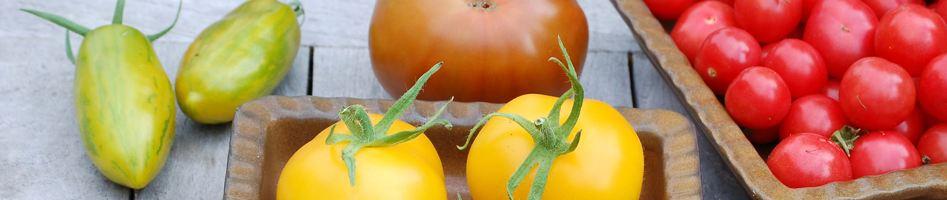 Tomaten.org header image